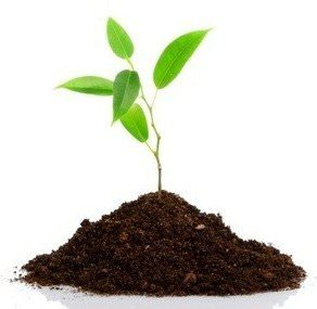 Grenelle 2 pollution environnementale  sols