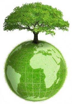 Pollution des sols : IEM / Plan de Gestion