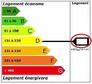 Entrez ci-dessous la valeur de votre DPE cerclée ici en rouge, puis validez