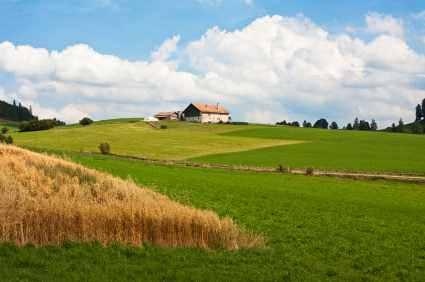 Diagnostic pollution terrain agricole
